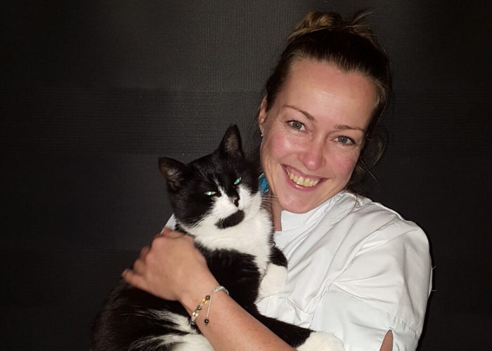 Kattentrimster cuijk nijmegen vacht kat trimsalon 1
