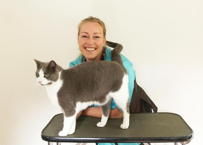 Kattentrimster cuijk nijmegen vacht kat trimsalon 3